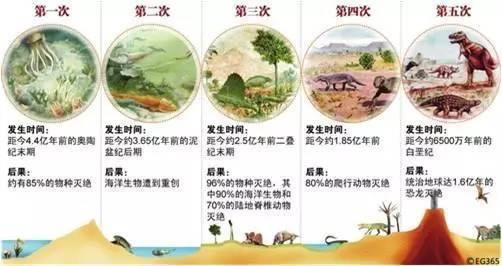 物種的五次大滅絕